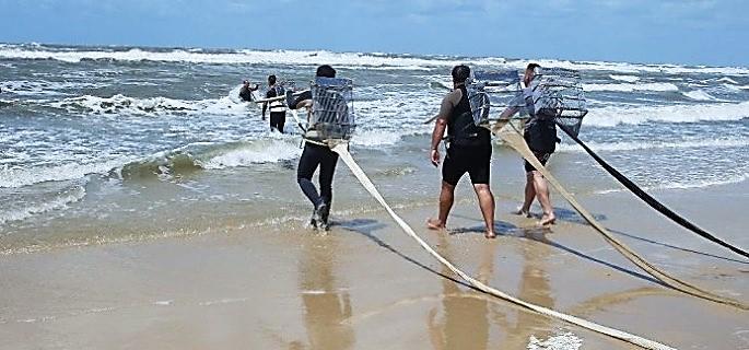 Mariscadores Huelva I